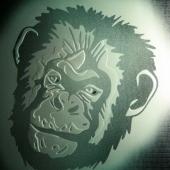glass_ape-850x1024